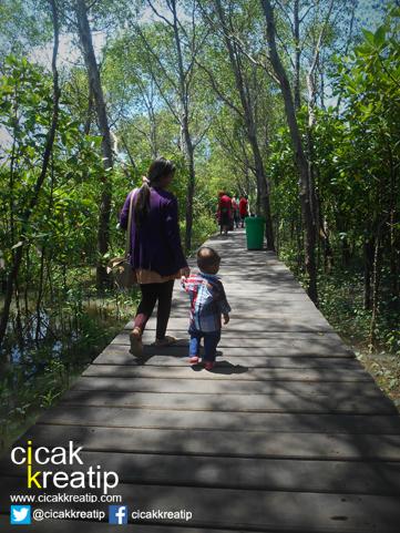 hutan mangrove surabaya
