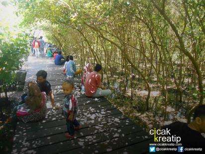 hutan mangrove surabaya2